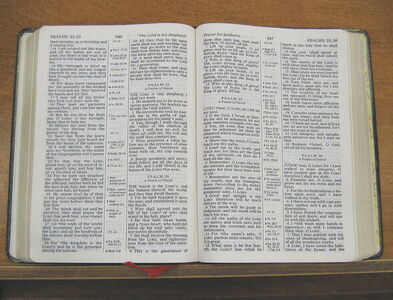 Lezingen zondag 16 augustus